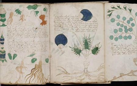 #6 – Leonardo da Vinci – Il manoscritto di Antonio Borghesi