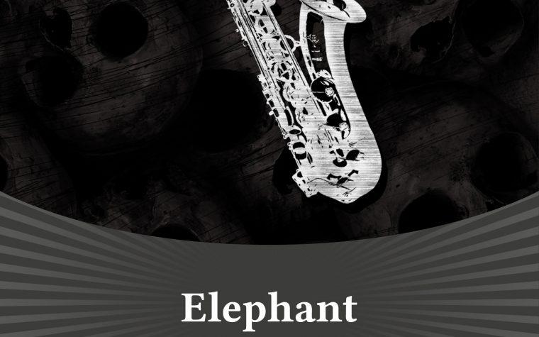 """Segnalazione: Alessia Vegro """"Elephant"""" – Les Flaneurs Edizioni"""