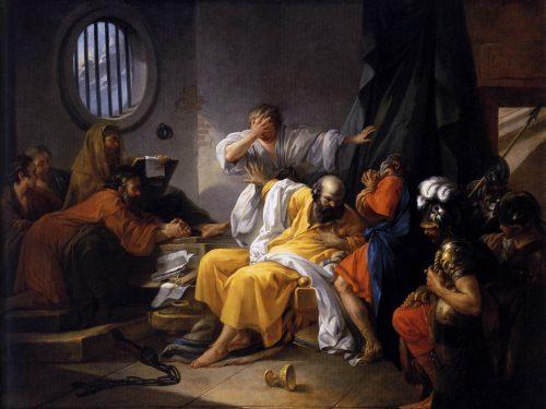 Cicuta – Conium maculatum e l'ombra di Socrate