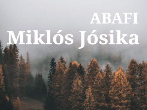 Abafi di Miklós Jósika  (Autore), Antonino Branca (Traduttore)