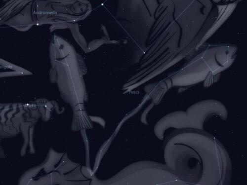 Costellazione dei Pesci